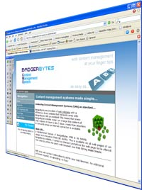 BadgerBytes Content Management Systems